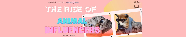 Animal Influencers